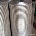生产定制不锈钢电焊网,不锈钢电