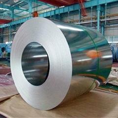 Galvanized Steel Plate & Coil