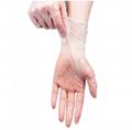Clear Transparent Protective Powder Free Disposable Examination PVC Vinyl Gloves 2