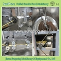 Core Filling Snacks Making Machine