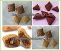 Core Filling Snacks Making Machine
