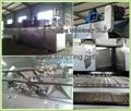 tilapia fish feed machine 9