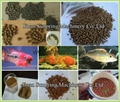 tilapia fish feed machine 12