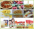 Corn Flakes Products Line
