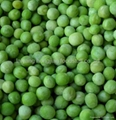 frozen vegetables frozen green pea
