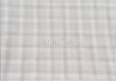 PET Conveyor Fabric