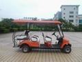 精緻小巧電動高爾夫球車 3