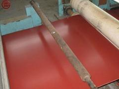 JIS G3302 PPGI/prepainted galvanized steel sheet/coils