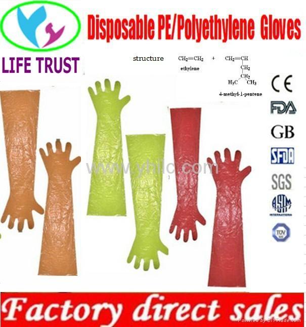 Vet gloves for animal 80cm 90cm long cuff 1