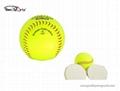 12inch softball