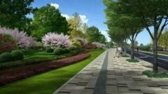 舟山道路園林綠化