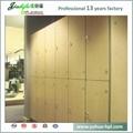 Jialifu design modern woodgrain hpl laminate lockers 5