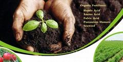 Fe eddha 6% chelate iron fertilizer (EDDHA-FE6)