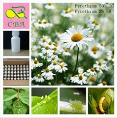 Pyrethrum 50%TC 2%EW