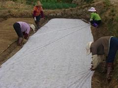 供應農用無紡布
