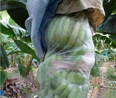 供应无纺布水果套袋
