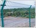 护栏网 2