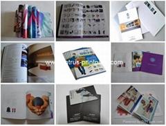 LED Wall Lights Company Catalogue Printing