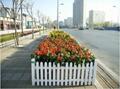 上海PVC塑钢草坪护栏 3