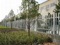 上海PVC塑钢草坪护栏 4