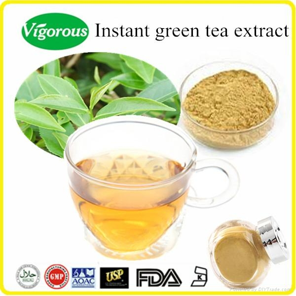 Health product organic instant green tea extract powder 2