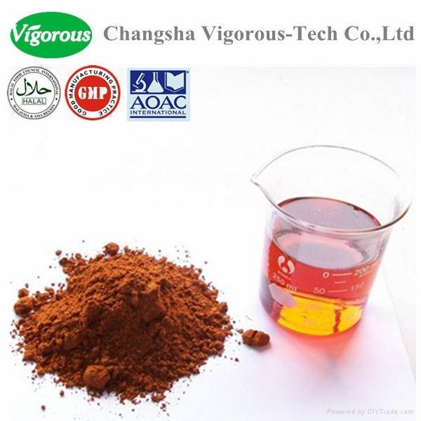 instant tea extract powder/instant black tea extract powder 1