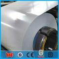prepainted galvanized steel sheet in coil  3