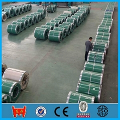 hot dipped galvanized steel sheet in coil GI coil