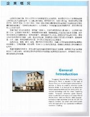 Yangquan Taihu Refractorics Plamt