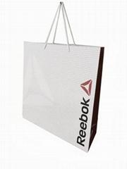 Paper promotional bag
