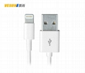 iPhone 6 USB cable