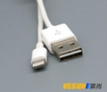 iPhone 6 USB cable 2