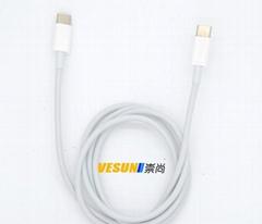 USB3.1 Type-C TO USB3.1 Type-C 充電連接線2.0版本