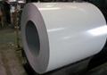 PPGI steel coil 5