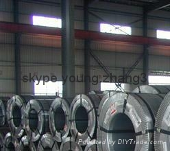 Hot dip dipped galvanized steel coil 3