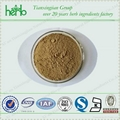 Siberian Ginseng Extract