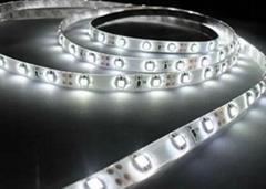 LED strips-LDS Series IP65 SMD5050 DC12/24V 48LEDs/m 11.52w/m