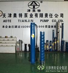 热水潜水泵简介