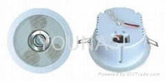 Ceiling Speaker with Light CE Approval (Y-081)