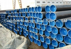 China 20# Seamless Carbon Steel Pipe (OD219)