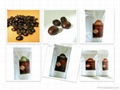 Arabia Robusta Culi Kopi Luwak Roasted Coffee Beans 2