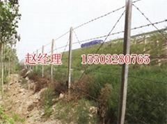 雙邊絲公路護欄網