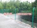 生态园护栏网 2