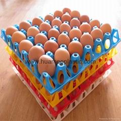 plastic 30 egg tray
