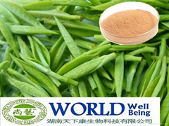 100% Nutural Green Tea Extract Powder With Tea Polyphenols And EGCG