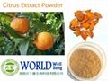 High Quality Citrus Aurantium Extract