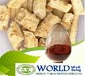 Natural Tongkat Ali Root Extract Powder