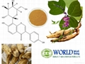 Pueraria Root Extract With Puerarin