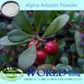100% Natural Pure Skin Whitening Powder