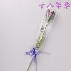 單支玫瑰花